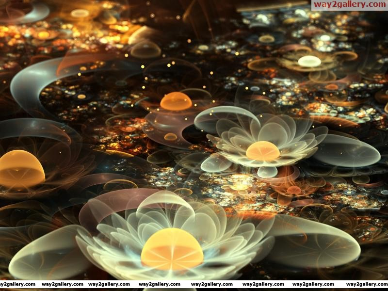 Wallpaper abstract fractal flowers lilies lily white