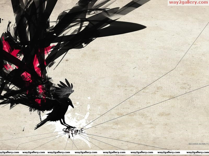 Wallpaper abstract silhouette bird wings lettering background art