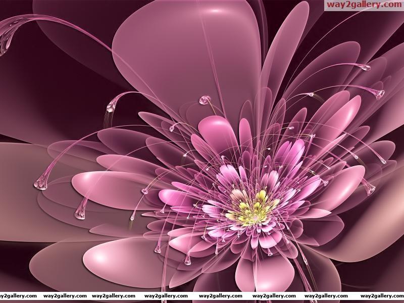 Wallpaper art flowers tendrils neon petals pink