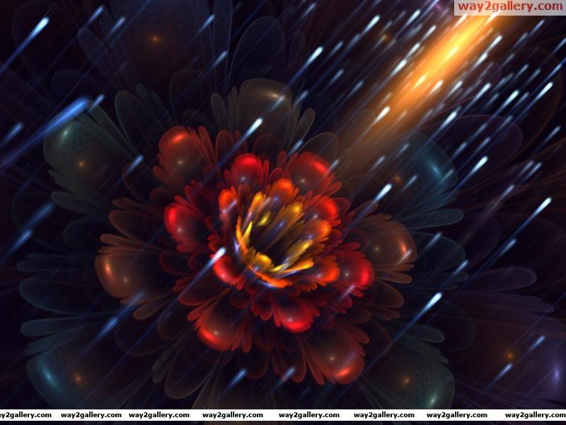 Wallpaper art fractal flower petals fireflies
