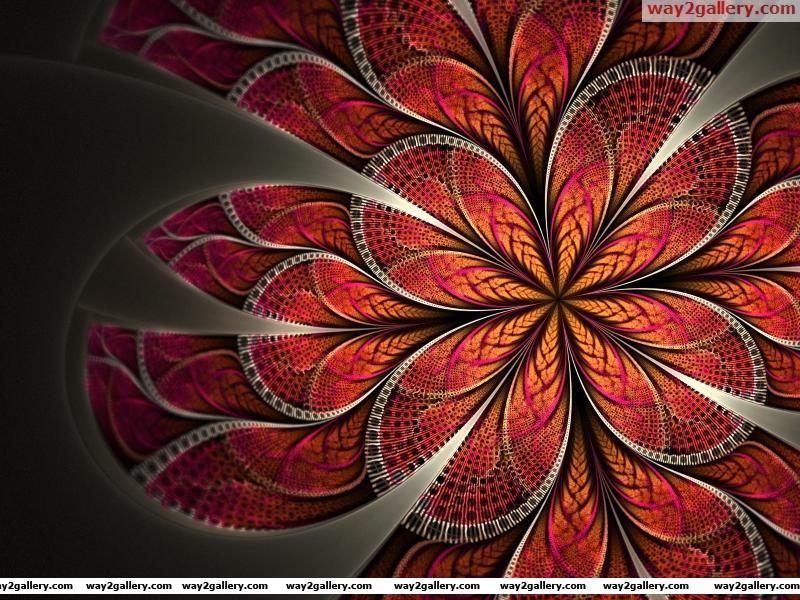 Wallpaper art pattern red flower petals