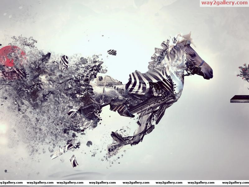 Abstract zebra hd