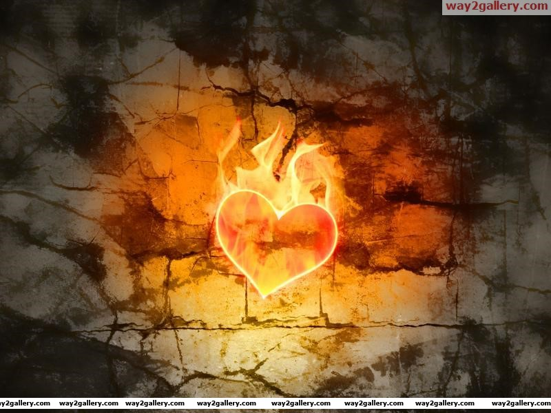 Hot heart hd