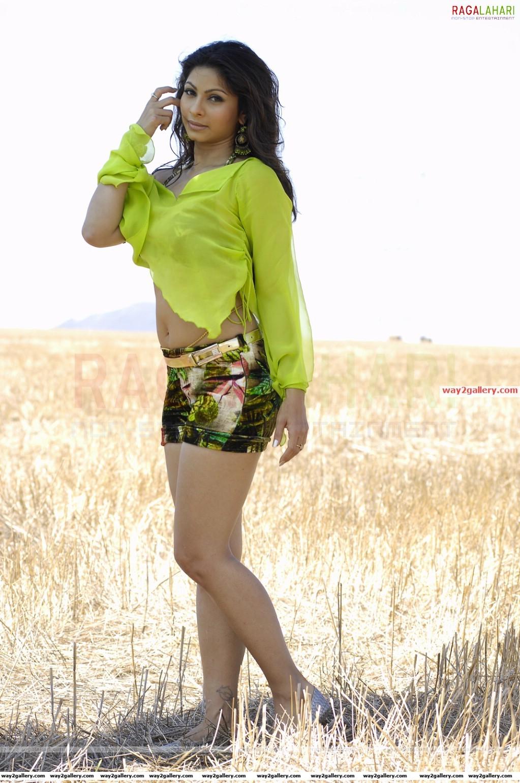 Bollywood actress amrita rao hot cleavage photo