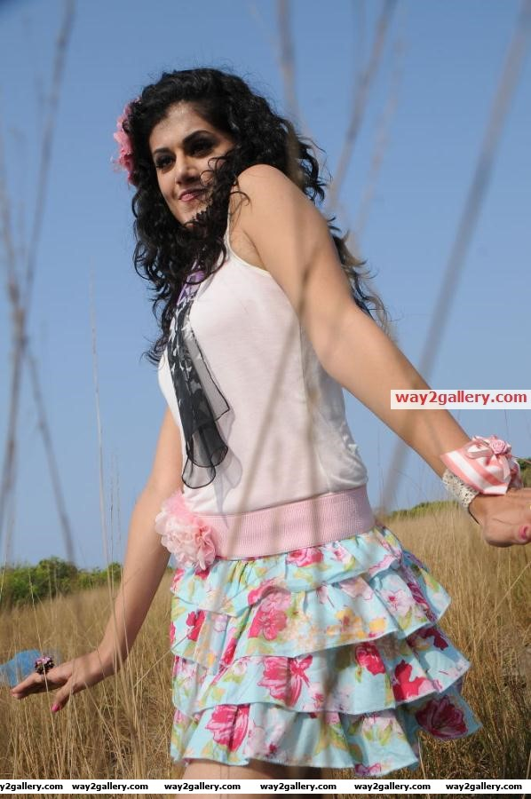 Tapsee latest hot stills