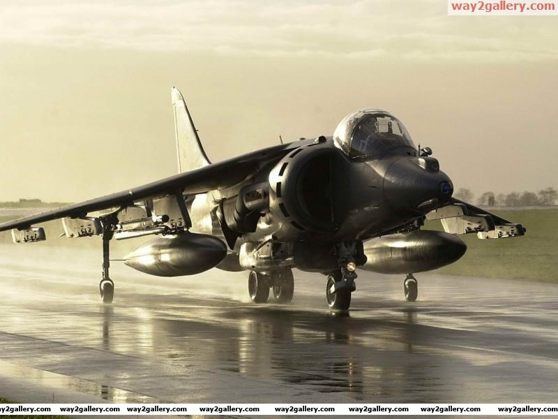 Raf harrier aircraft