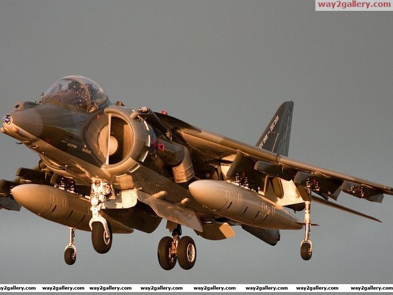 Harrier gr9a