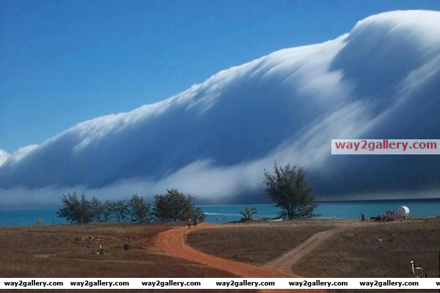 Morning glory cloud in australia