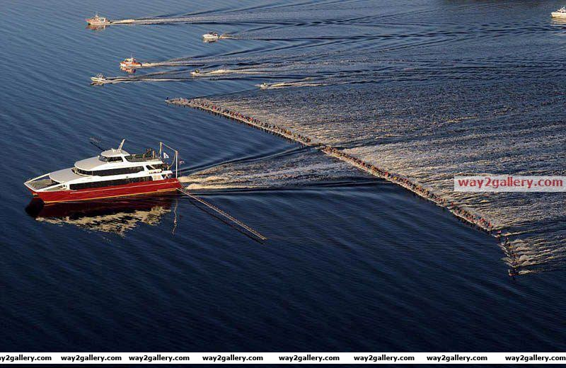 Water skiing   world record   145 water skiers pulled single boat