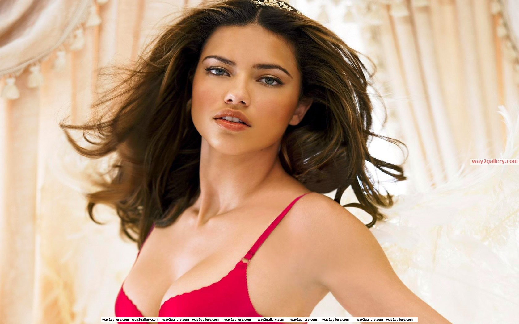 Hot wallpapers hot models wallpapers50