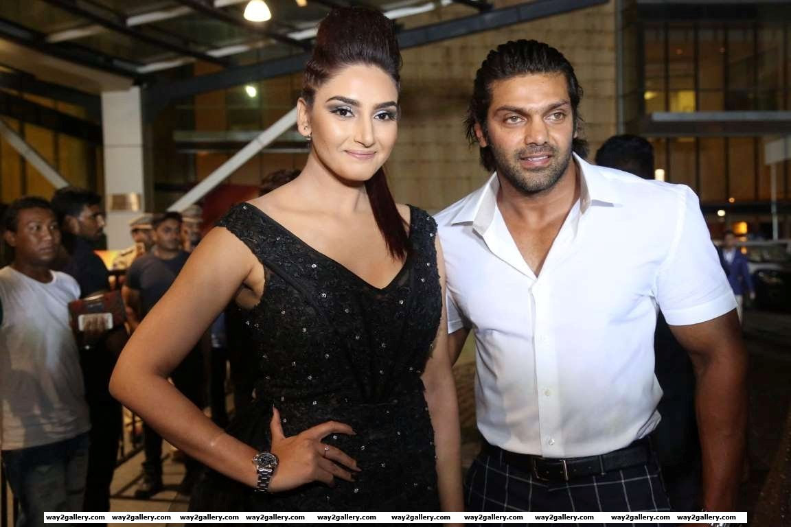 Ragini dwivedi and arya pose for photographers during rd filmfare awards south