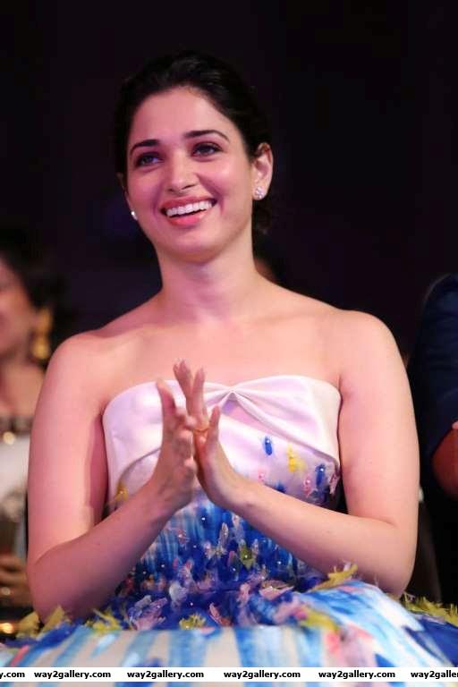 Tamannaah bhatia looked pretty at rd filmfare awards south