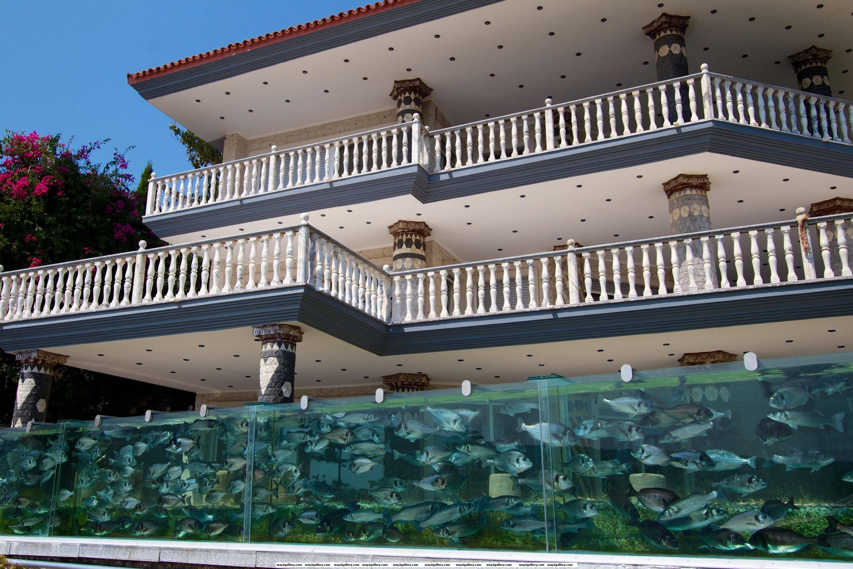 Crazy pirhana fish tank fence surrounding a house in dubai
