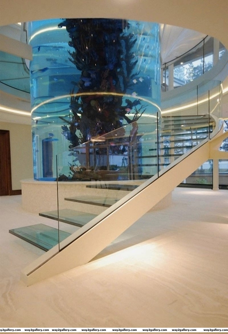 Incredible multi storey aquarium in million dollar home