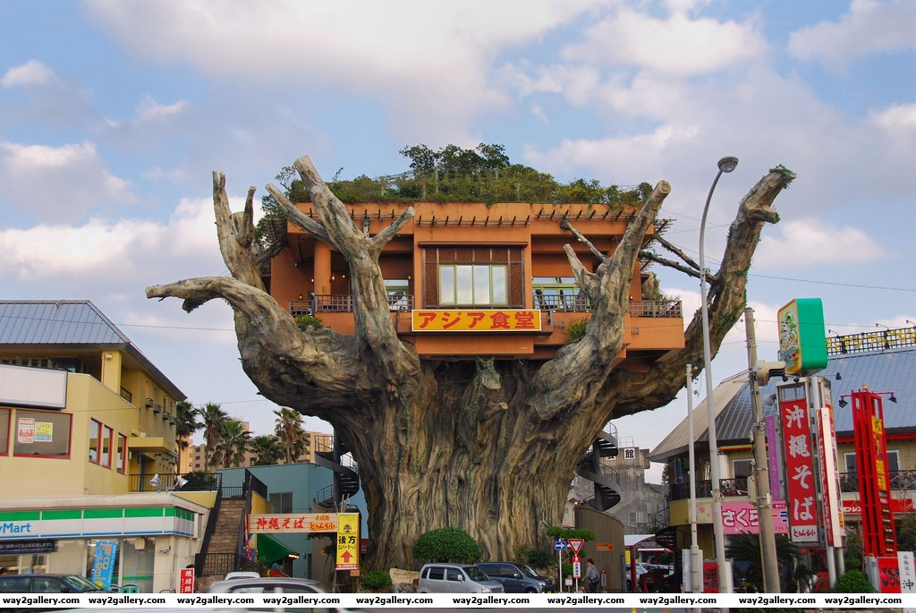 The incredible tree house restaurant in naha japan